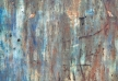 f-dr-shmunk-abstractions-2012-06-16_9908_ed1_edited-1