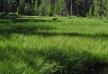 f-dr-shmunk-wind-river-range-2011-08-16_4742_edited-1